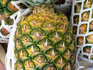 p20_pineapple.jpg