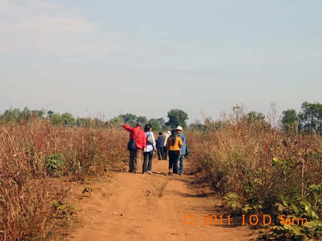 http://www.iodfarm.com/pic-iod/p20110330-01.jpg