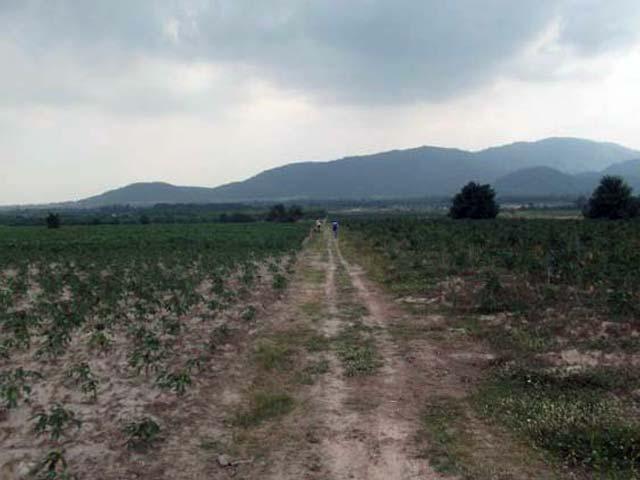 http://www.iodfarm.com/pic-iod/p20110501place-02.jpg