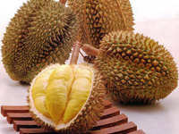 p20_durian.jpg