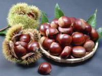 p30_Chestnuts.jpg