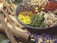 p30_Herbs.jpg